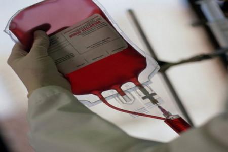 0,8 мл крови