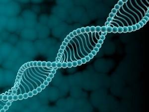 Молекулярный анализ хромосом