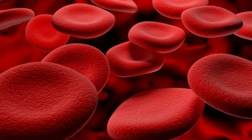 Показатели гемоглобина у мужчин