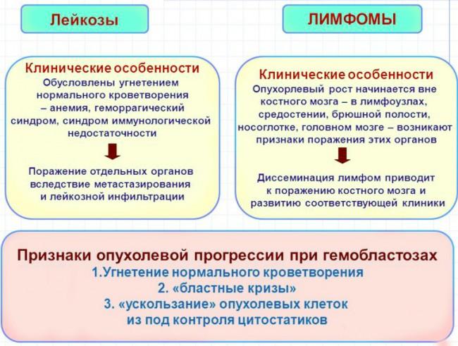 Сравнительная характеристика лейкозов и лимфом