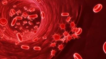 Гематокрит: нормы и патологии у детей