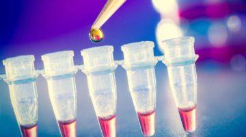 Какая группа крови является подходящей для всех?