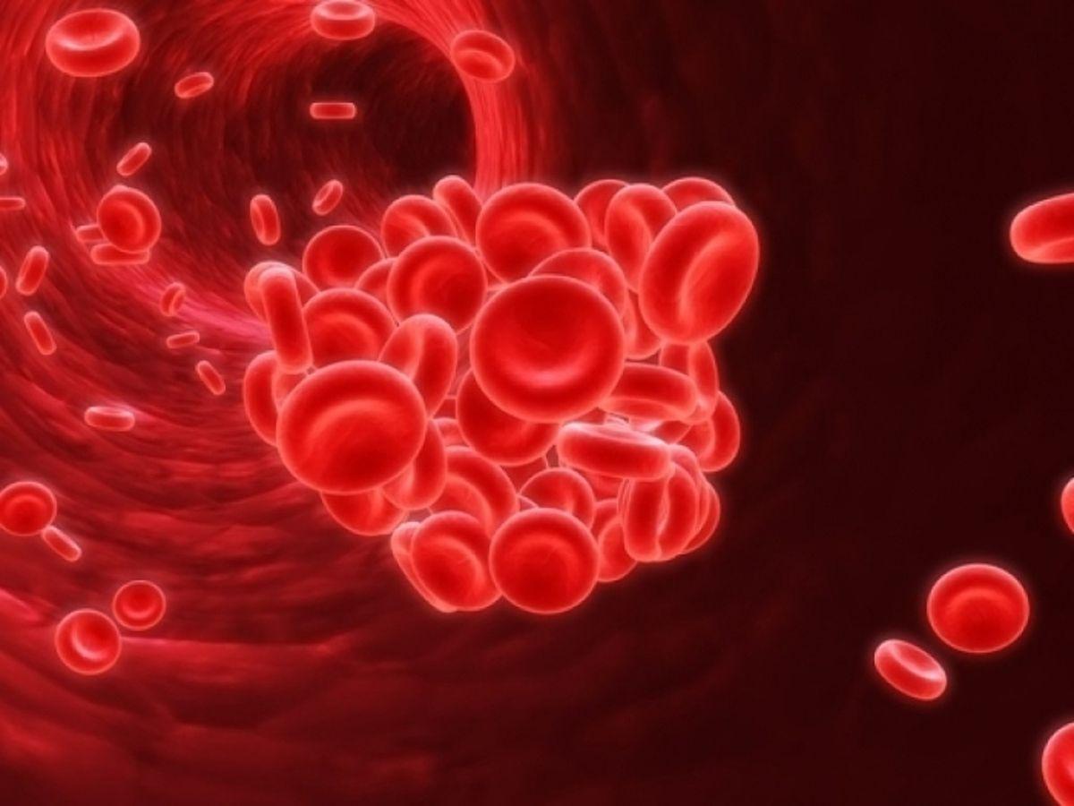 Почему кровь становится густой?