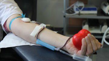 Правила донорства и нормы сдачи крови
