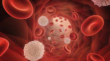 Лейкоциты при аппендиците