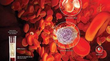 Апластическая анемия: помощь больному и методы лечения