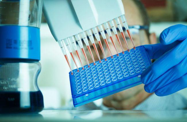Анализ крови при повышенном билирубине