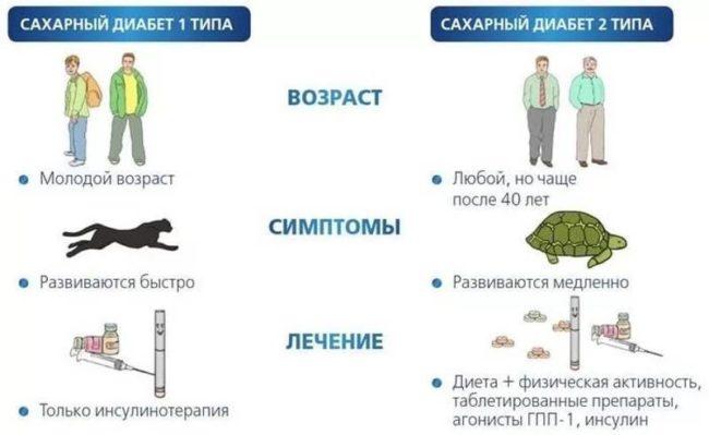 Диабет 1 и 2 типа (схема)