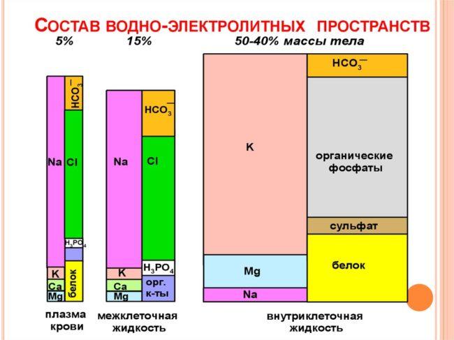 Содержание электролитов в организме (схема)
