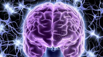 Дисциркуляторная энцефалопатия: диагностика и лечение