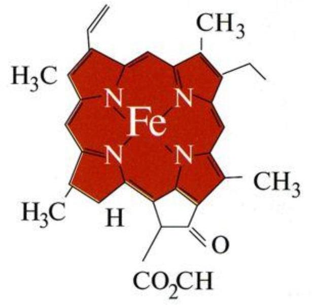 формула гемоглобина